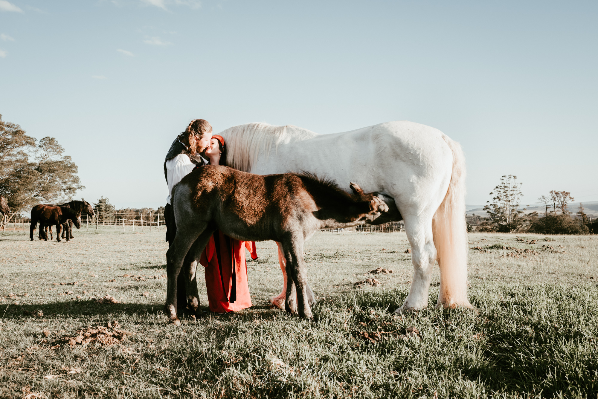 Katrina & Stuart's engagement shoot took place at the Outeniqua Moon Percheron Stud Farm, just outside of George. Photography Sharyn Hodges