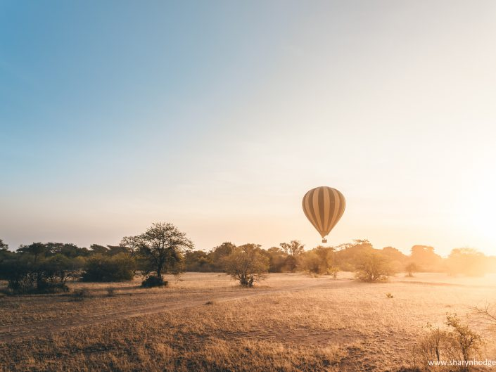 hot air balloon, the great migration, Tanzania, The Serengeti National Park, safari, morning game drive, travel blog, tanzania photographer, wildlife photography, east africa, sharyn hodges