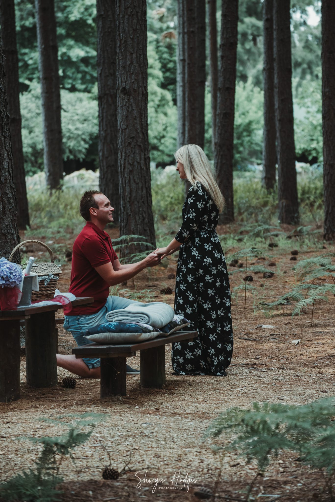 engagement shoot, forest, Tsitsikamma, garden route photographer, Plettenberg bay, garden route, Sharyn Hodges, surprise