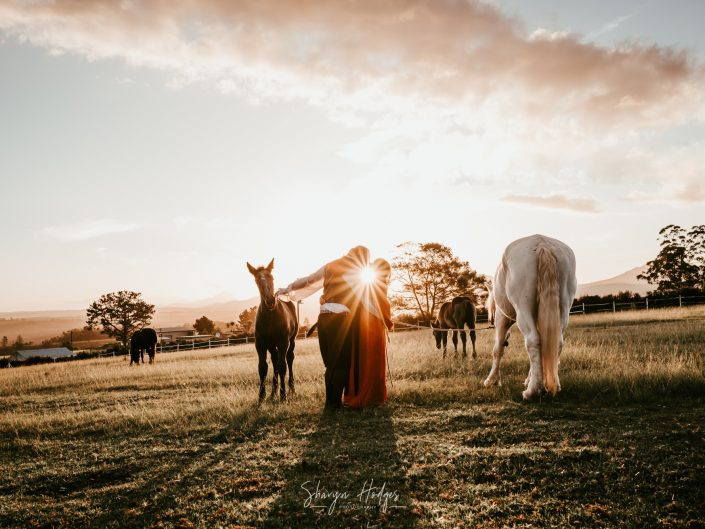 Katrina & Stuart | Engagement Shoot | Outeniqua Moon Percheron Stud Farm